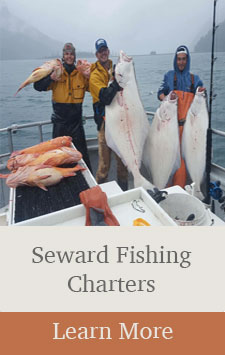 Seward Alaska Fishing